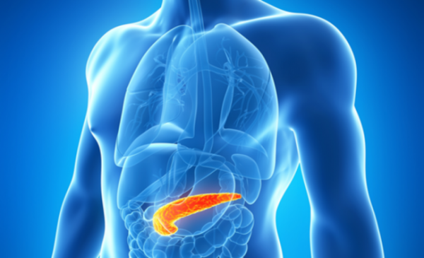 Odd Trick Cheats the Pancreas to Start Producing Insulin Again 1 650x395 1