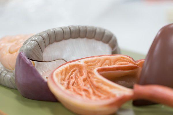 5 верных способов лечения язвенной болезни